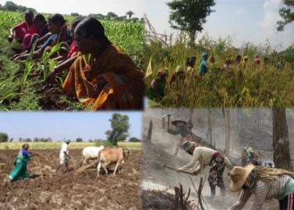Live-Streamed Seminar: Agroecology Transitions-Transformations for A more Just and Sustainable Food System
