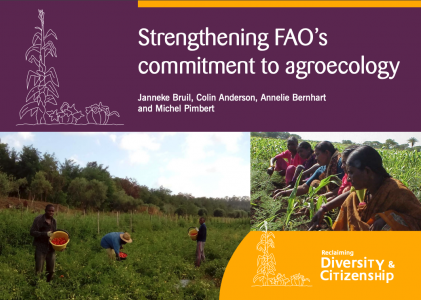 Strengthening FAO's Commitment to Agroecology