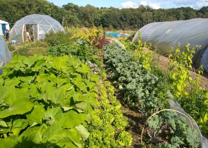What's Up With Agroecology Now!? 2019/05 Update
