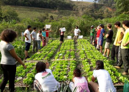 Agroecology or Collapse Part II – Democratizing Food Systems and Breaking the Bonds of Food Empires